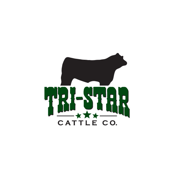 Tri-Star Cattle Co. - Logo Design, Arden, Manitoba